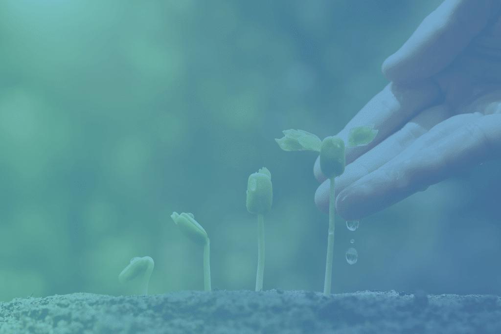 Définition du lead nurturing B2B