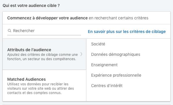 Choix des attributs de l'audience lors de la création d'une audience LinkedIn