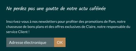 fenêtre pop-up d'une inscrit à une newsletter